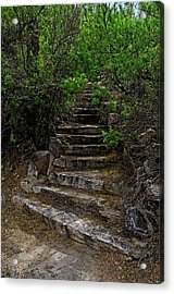 Acrylic Print featuring the photograph Instep With Nature V53 by Mark Myhaver