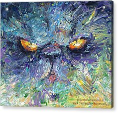 Intense Palette Knife  Persian Cat Acrylic Print