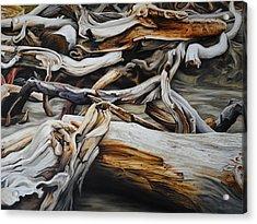 Intertwined Acrylic Print by Chris Steinken