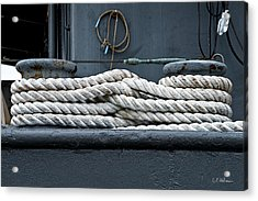 Intertwined Acrylic Print by Christopher Holmes