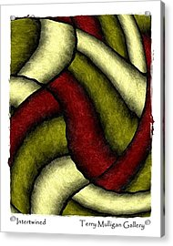 Intertwined Acrylic Print by Terry Mulligan