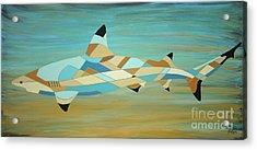 Into The Blue I Shark Painting Acrylic Print