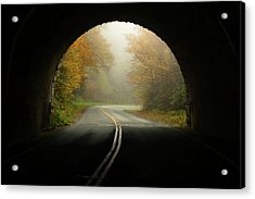 Into The Fall Blue Ridge Parkway North Carolina Acrylic Print by Terry DeLuco