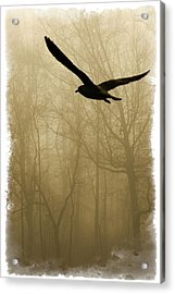 Acrylic Print featuring the photograph Into The Fog by Harry Spitz