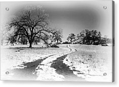 Into The Foothills Acrylic Print by Floyd Hopper