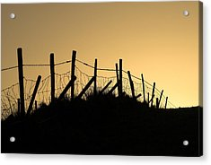 Into The Light Acrylic Print by Hazy Apple
