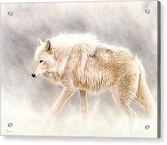 Into The Mist Acrylic Print by Sandi Baker
