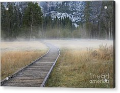 Acrylic Print featuring the photograph Into The Mist by Sandra Bronstein