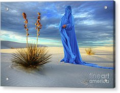 Into The Mystic 26 Acrylic Print by Bob Christopher