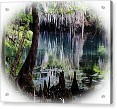 Into The Past Acrylic Print by Sheri McLeroy