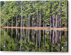 Into The Sc Woods Acrylic Print