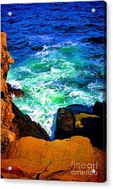 Into The Sea Acrylic Print