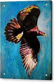 Into The Skies. Acrylic Print by Khalid Saeed