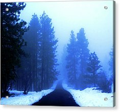 Acrylic Print featuring the photograph Into The Snowy Woods by Ben Upham III