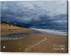 Into The Storm Acrylic Print by Linda Mesibov