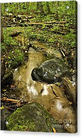 Into The Stream 8 Acrylic Print