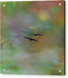 Acrylic Print featuring the painting Into The Sunset by Kevin Caudill