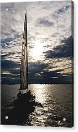 Into The Sunset Acrylic Print by Tom Dowd