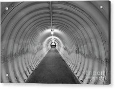 Acrylic Print featuring the photograph Into The Tunnel by Juli Scalzi