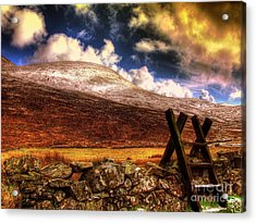Into The Wild Acrylic Print by Kim Shatwell-Irishphotographer