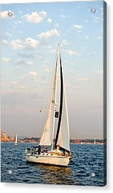 Into The Wind Acrylic Print by Tom Dowd