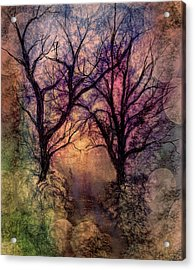 Into The Woods Acrylic Print by Annette Berglund