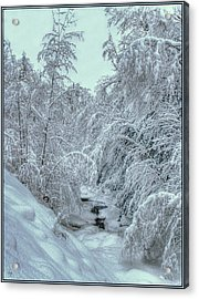 Acrylic Print featuring the photograph Into White by Wayne King