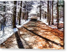 Acrylic Print featuring the photograph Into Winter by Betsy Zimmerli