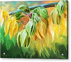 Acrylic Print featuring the mixed media Intoxicating Ylang Ylang by Carol Cavalaris