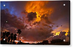 Intuition Acrylic Print by Skip Hunt
