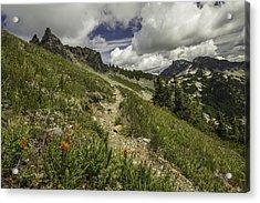 Inviting Trail Acrylic Print