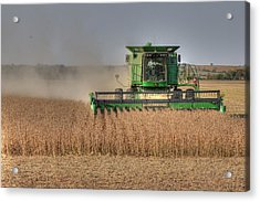 Iowa Soybean Harvest Acrylic Print