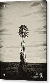 Iowa Windmill In A Corn Field Acrylic Print