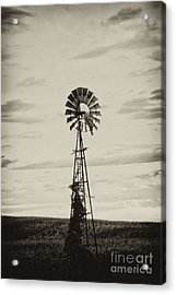 Iowa Windmill In A Corn Field Acrylic Print by Wilma  Birdwell
