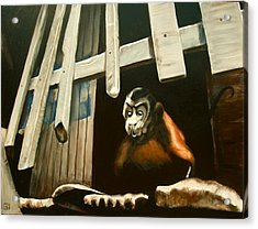 Iquitos Monkey Acrylic Print by Chris  Slaymaker