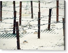 Iraqi Anti-personnel Mines And Barbed Acrylic Print by Everett