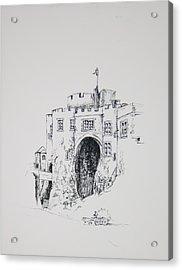 Ireland Castle 2 Acrylic Print by Dixie Trent