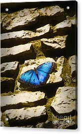 Iridescence-on-rocks Acrylic Print
