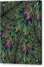 Iridescent Feathers Acrylic Print by Becky Herrera