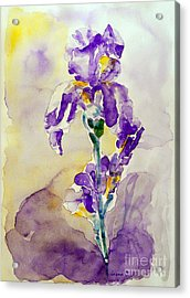 Acrylic Print featuring the painting Iris 2 by Jasna Dragun