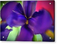Iris Abstract Acrylic Print by Michael Putnam