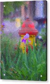 Iris And Fire Plug Acrylic Print by David Lane