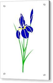 Iris Acrylic Print by Asbjorn Lonvig