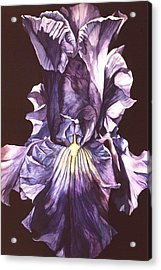 Acrylic Print featuring the painting Iris At Night by Alfred Ng