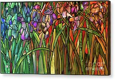 Iris Coloring Book Acrylic Print by Mindy Sommers