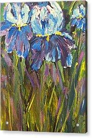 Iris Floral Garden Acrylic Print