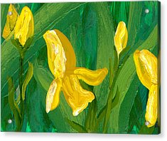 Iris Flow Acrylic Print by Wanda Pepin