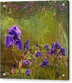 Iris Garden Acrylic Print by Jeff Burgess