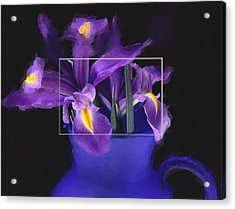 Iris In Blue Picture Acrylic Print by Daniel D Miller