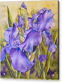 Iris In Purple Acrylic Print